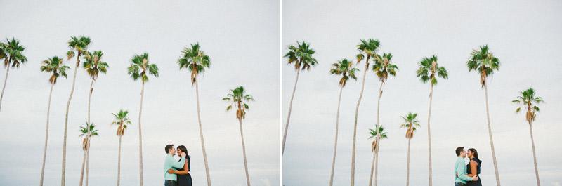 vinoy-park-palms