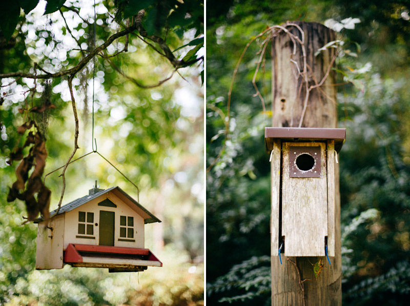 intimate backyard wedding: bird house and bird feed at the glen venue