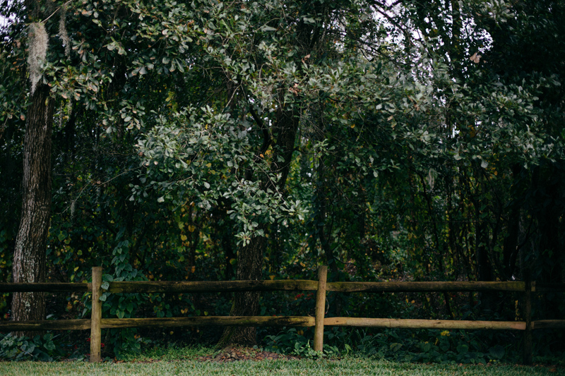 cross creek ranch wedding:  wooded area